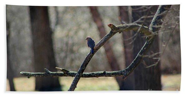 Bluebird, Bluebird, Sing To Me Beach Towel