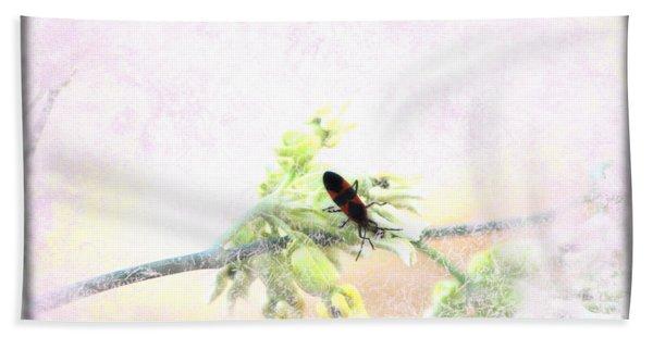 Boxelder Bug In Morning Haze Beach Towel