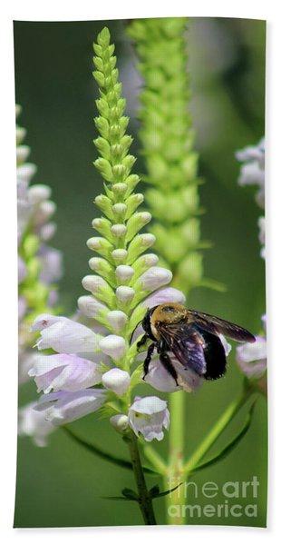Bumblebee On Obedient Flower Beach Towel