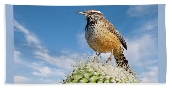 Cactus Wren On A Saguaro Cactus Beach Sheet
