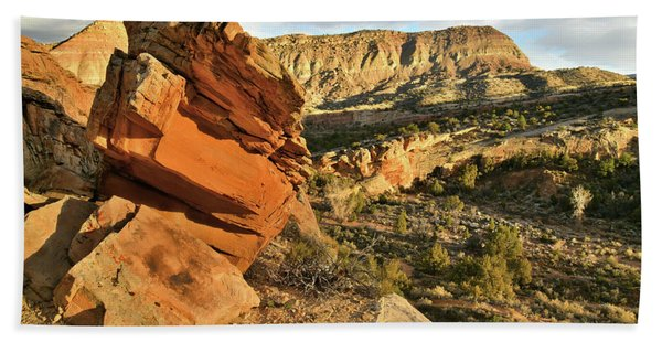 Cliffside Rock Cropping In Colorado National Monument Beach Towel