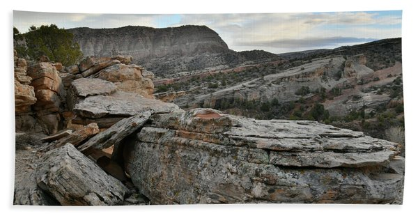 Colorful Overhang In Colorado National Monument Beach Towel