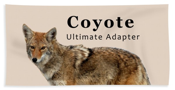 Coyote Ultimate Adaptor Beach Towel