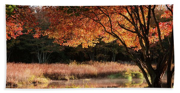 Beach Towel featuring the photograph Dawn Lighting Rhode Island Fall Colors by Jeff Folger