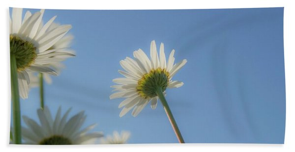 Distracted Daisies Beach Towel