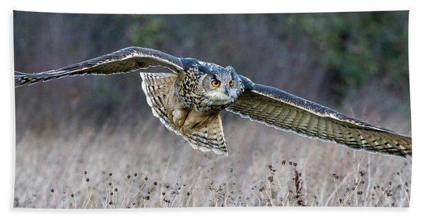 Eagle Owl Gliding Beach Towel