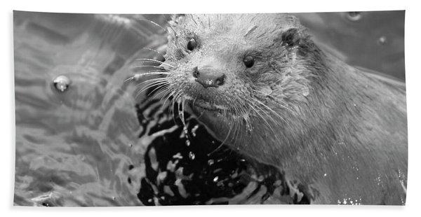 European Otter Beach Towel