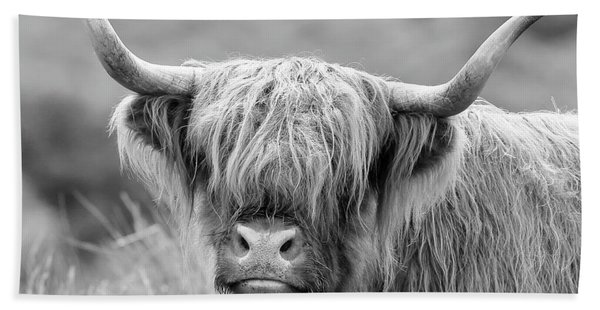 Face-to-face With A Highland Cow - Monochrome Beach Sheet