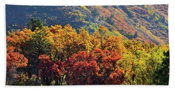 Fall Colors Along Avalanche Creek Road Beach Towel