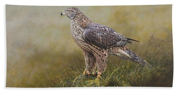 Female Goshawk Paintings Beach Towel