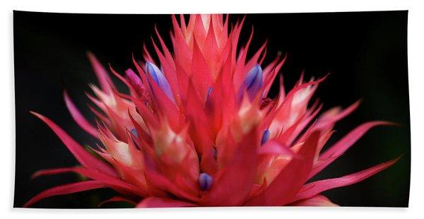 Flaming Flower Beach Towel
