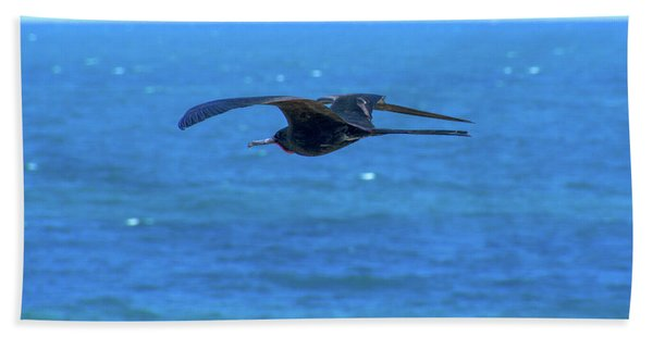Frigatebird Beach Towel