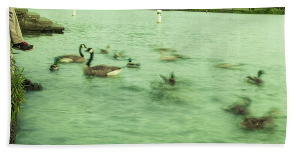 Ghost Ducks Beach Towel