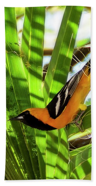 Hooded Oriole V1912 Beach Towel