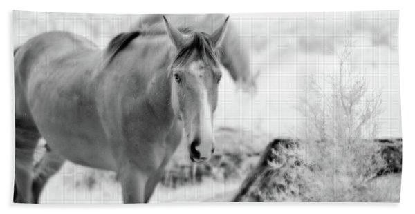 Horse In Infrared Beach Towel