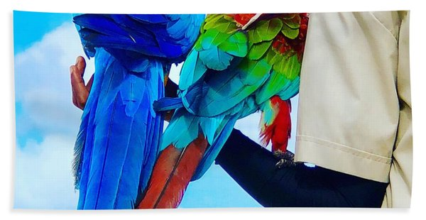 Island Birds  Beach Towel