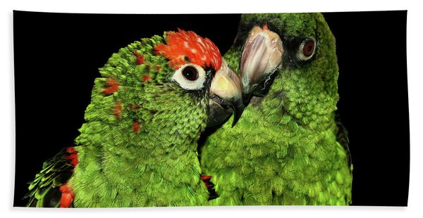 Jardine's Parrots Beach Towel