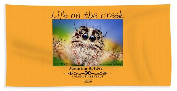 Jumping Spider Colonus Hesperus Beach Towel