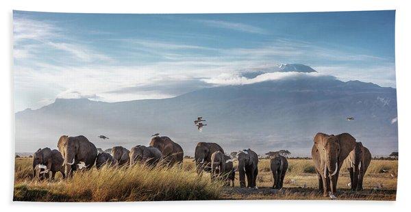 Large Herd Of African Elephants In Front Of Kilimanjaro Beach Towel