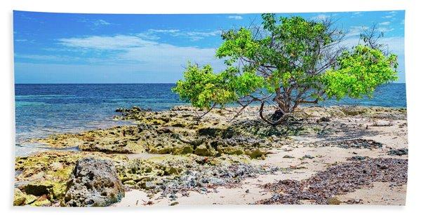 Lone Shore Tree Beach Towel