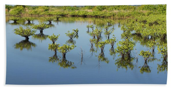 Mangrove Nursery Beach Towel