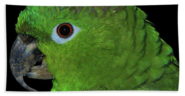 Mealy Amazon Beach Towel