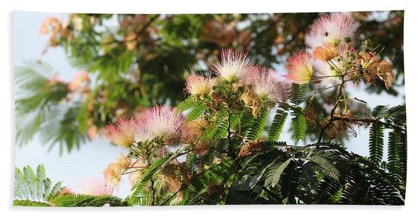 Mimosa Tree Flowers Beach Towel