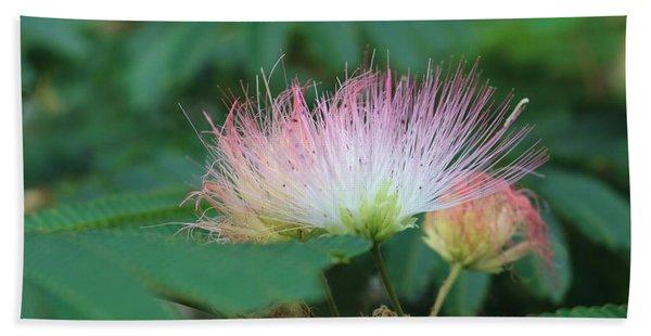 Mimosa Tree In Bloom Beach Sheet