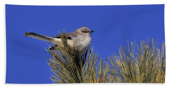 Mockingbird In White Pine Beach Towel