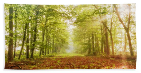 Neither Summer Nor Winter But Autumn Light Beach Towel