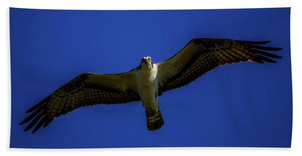 Osprey Glide In Blue Beach Sheet