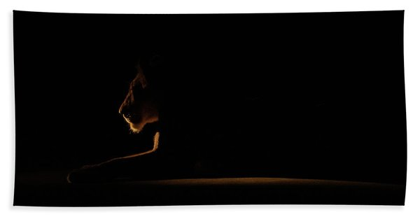 Outline African Lion Beach Towel
