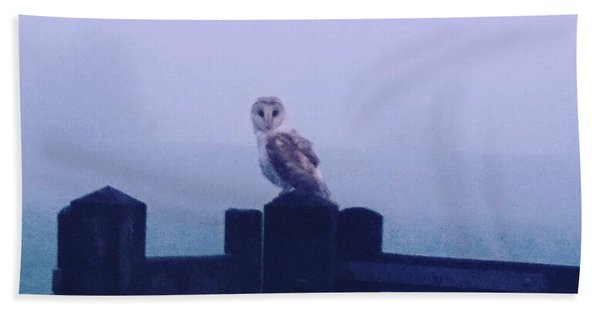 Owl In The Mist Beach Towel