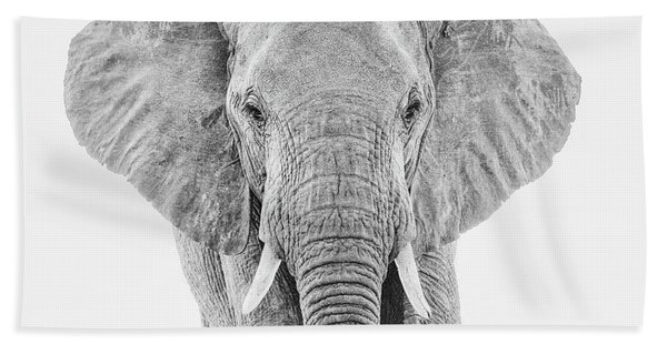 Portrait Of An African Elephant Bull In Monochrome Beach Towel