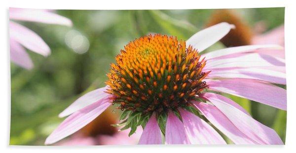 Purple Coneflower Bloom And Petals Beach Sheet