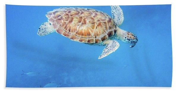Sea Turtle And Fish Swimming Beach Towel