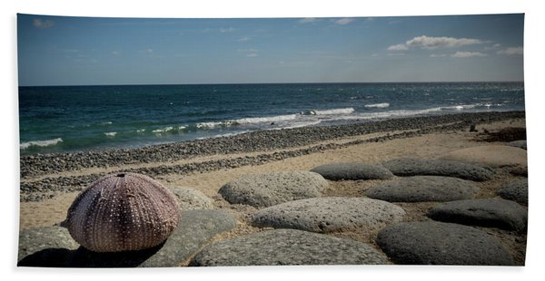 Sea Urchin View Beach Towel