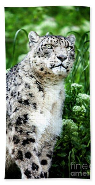 Snow Leopard, Leopard Art, Animal Decor, Nursery Decor, Game Room Decor,  Beach Towel
