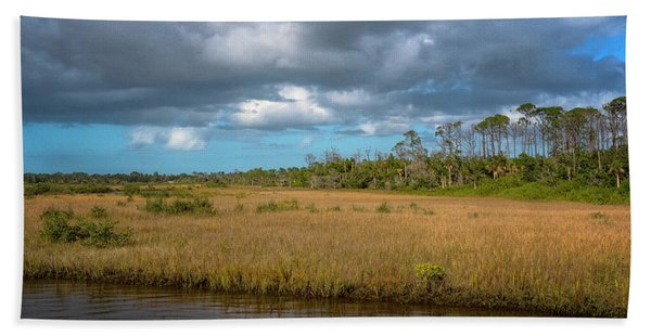 Beach Towel featuring the photograph Spruce Creek Park by Tom Singleton