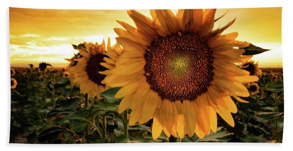 Sunflower Sunset Beach Towel