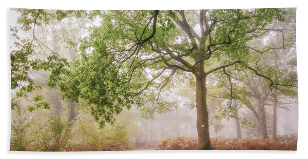The Autumn Path Beach Towel