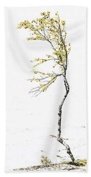 The Birch Tree Beach Towel