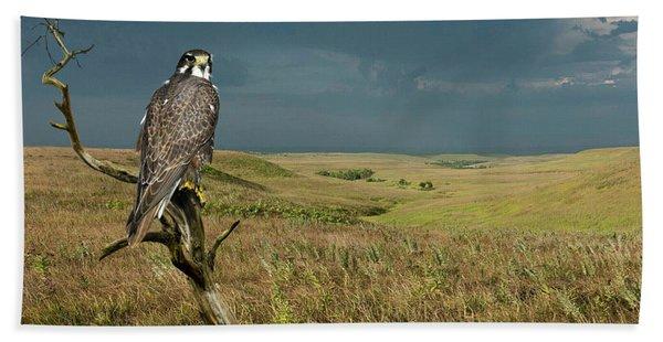 The Tall Grass Prairie, Kansas, Peregrine Falcon Beach Towel