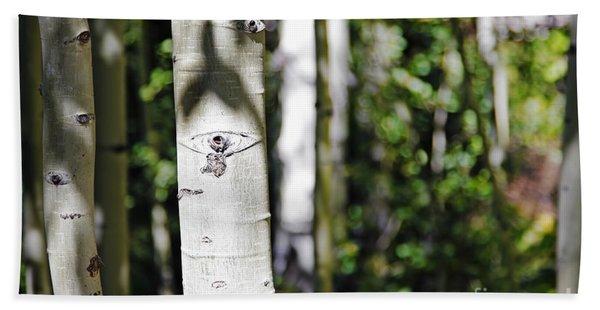 Through The Aspen Forest Beach Towel