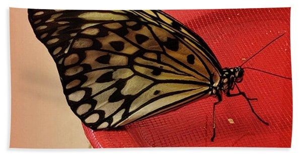 Torn Butterfly Beach Towel