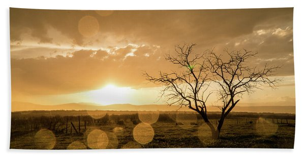 Tree Sunset Beach Towel