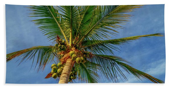 Under The Coconut Palm Beach Towel