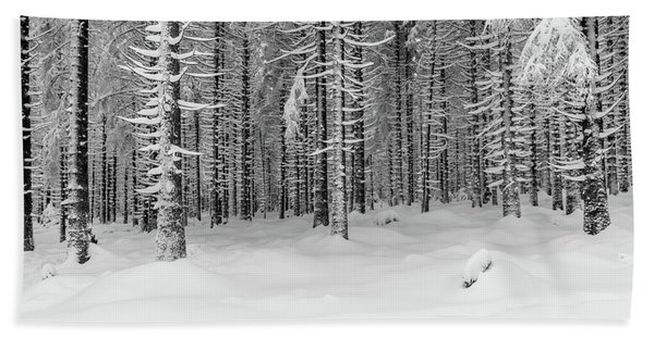 winter forest, Harz Beach Towel