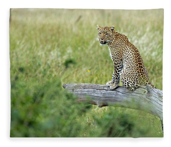 Leopard In Serengeti Fleece Blanket