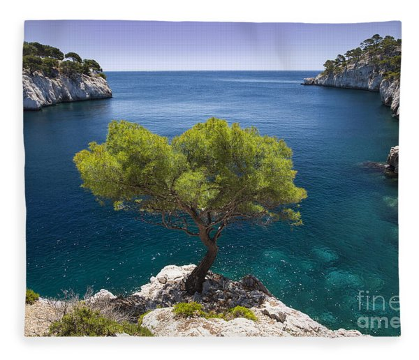 Fleece Blanket featuring the photograph Lone Pine Tree by Brian Jannsen